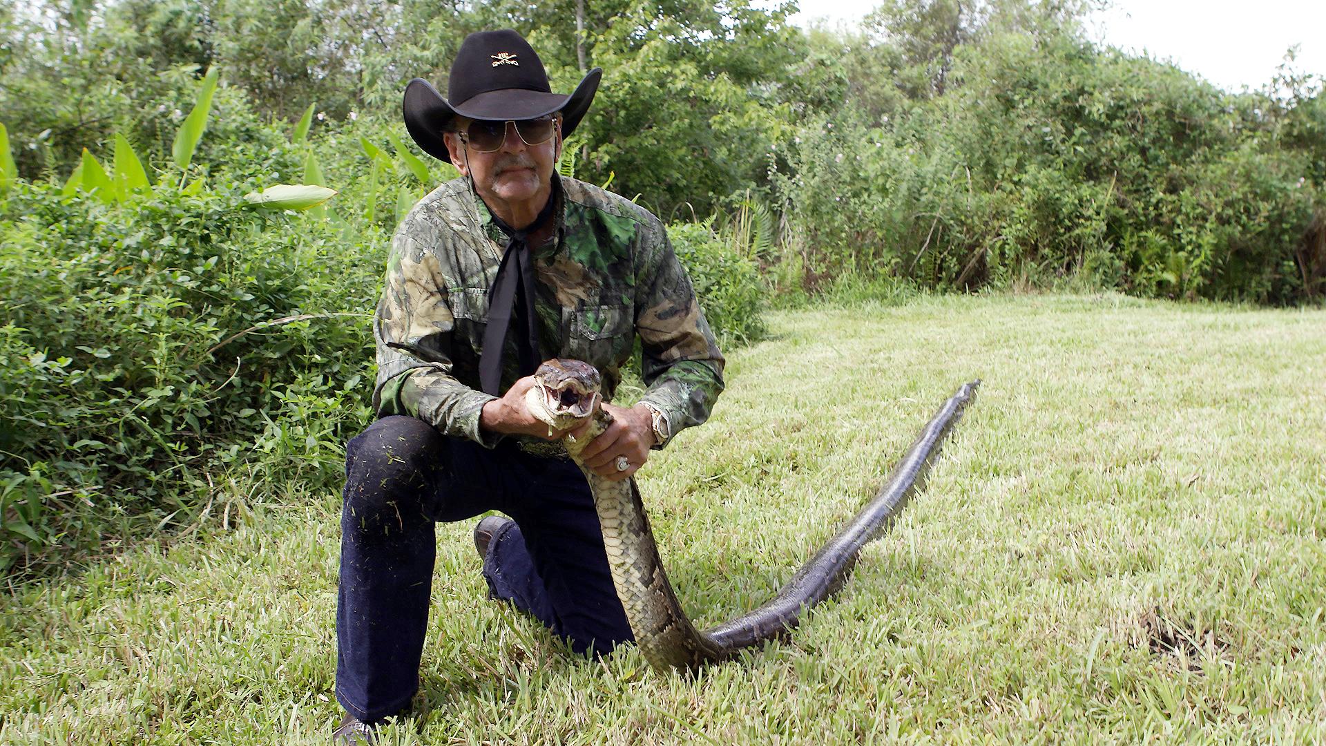 Python being captured